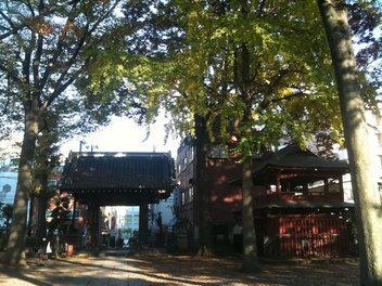 浦和区/玉蔵院周辺風景